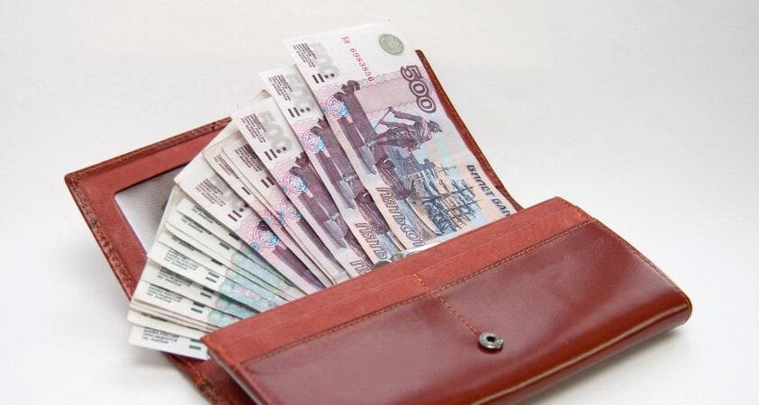 Кошелек или Гуманок с деньгами (фото)