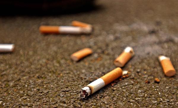 Сигаретный окурок - бэчик (фото)