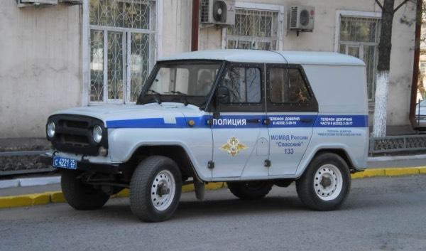 Полицейский УАЗ или Броневик (фото)